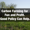 Carbon Farming for Fun and Profit. Good Policy Can Help.
