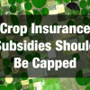 Crop Insurance Subsidies Should Be Capped