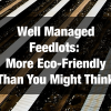 Well Managed Feedlots: More Eco-Friendly Than You Might Think
