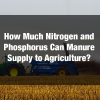 1. How Much Nitrogen and Phosphorus Can Manure Supply?