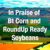 In Praise of Bt Corn and RoundUp Ready Soybeans