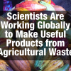 Scientists Are Working Globally to Make Useful Products from Agricultural Waste