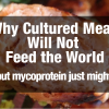 Why Cultured Meat Will Not Feed the World (but mycoprotein just might)