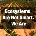 Ecosystems are Not Smart, We Are