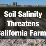 Soil Salinity Threatens California Farms