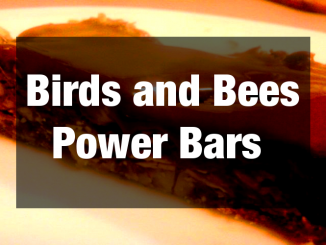 Birds and Bees Power Bar Recipe