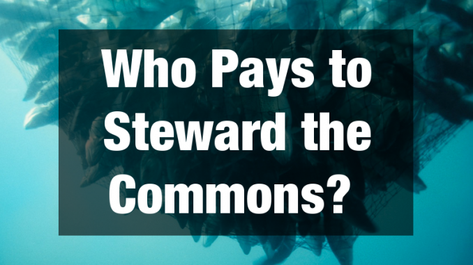 Who Pays to Steward the Commons