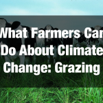 What Farmers Can Do About Climate Change: Grazing