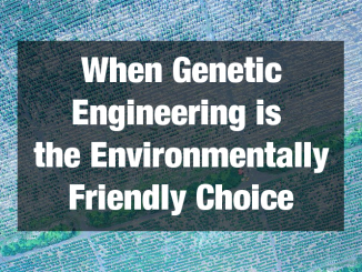 Paul Vincelli: When Genetic Engineering is the Environmentally Friendly Choice