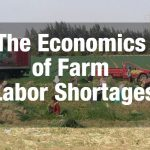The Economics of Farm Labor Shortages