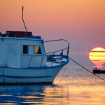 The Challenges and Economics of Local Seafood (Local Anything)