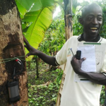 Bringing Technological Innovation to Agroforestry in Uganda