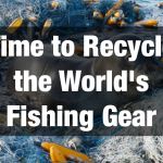 In the Fishing Industry, Gear Recycling is Finally Catching On