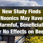 New Study Finds Neonicotinoids May Have Harmful, Beneficial, or No Effects on Bee Health