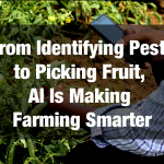 From Identifying Pests to Picking Fruit, AI Is Making Farming Smarter